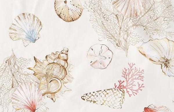 shells-detail.jpg